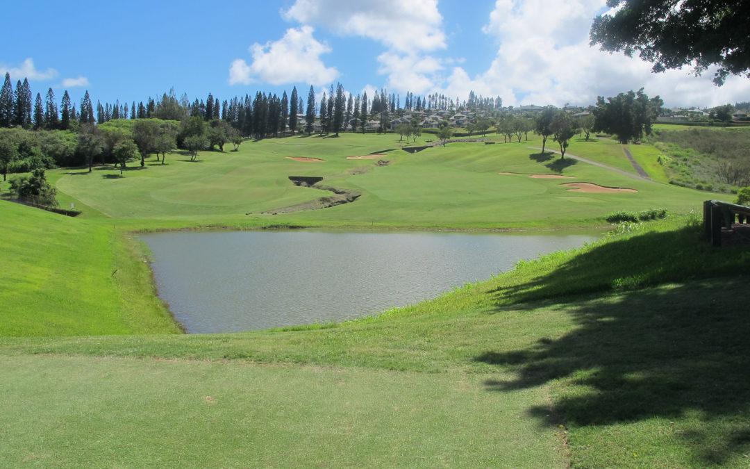 Golf op Hawaii: net niet hetzelfde als in Nederland