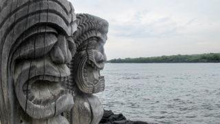 Cultuur snuiven en met dolfijnen snorkelen